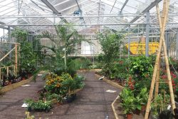 Butterfly House - Horniman Museum & Gardens