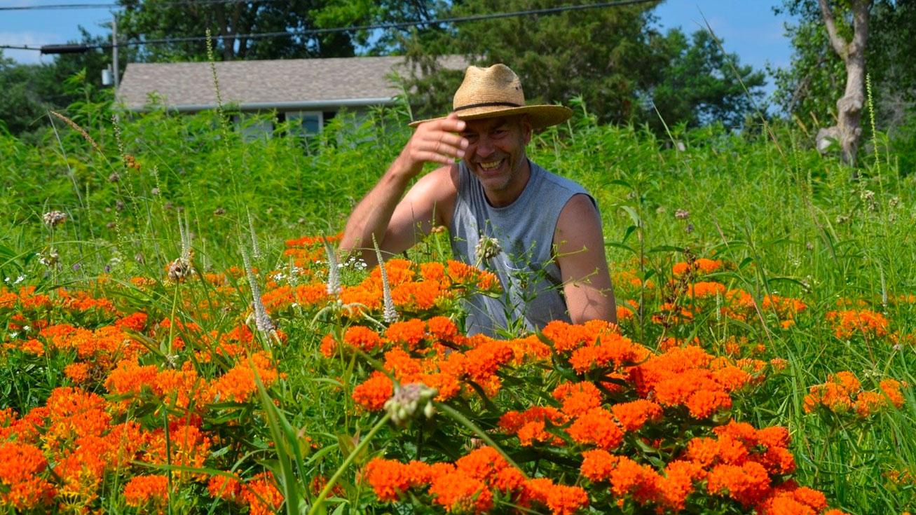 Wes Hall Garden Maintenance
